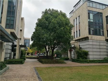 嘉定区 菊园核心板块 树屏路 沿街独栋出售 房东做生意 资金周转