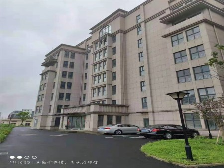 松江区 泗泾核心板块 泗砖路 整栋物业 整栋别墅 出租 租金价格低